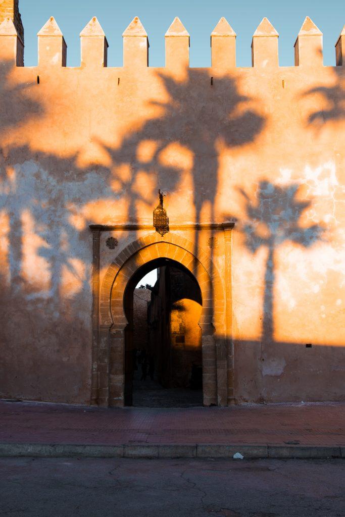 ombres de palmiers sur façade